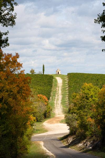 Vignes de Cahors à l'automne