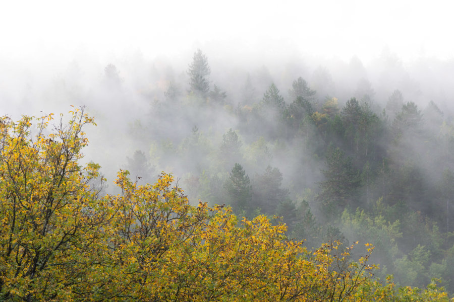 Brume sur le Lot à l'automne