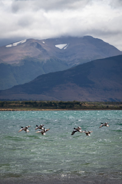 Paysage de lac et montagne à Puerto Natales