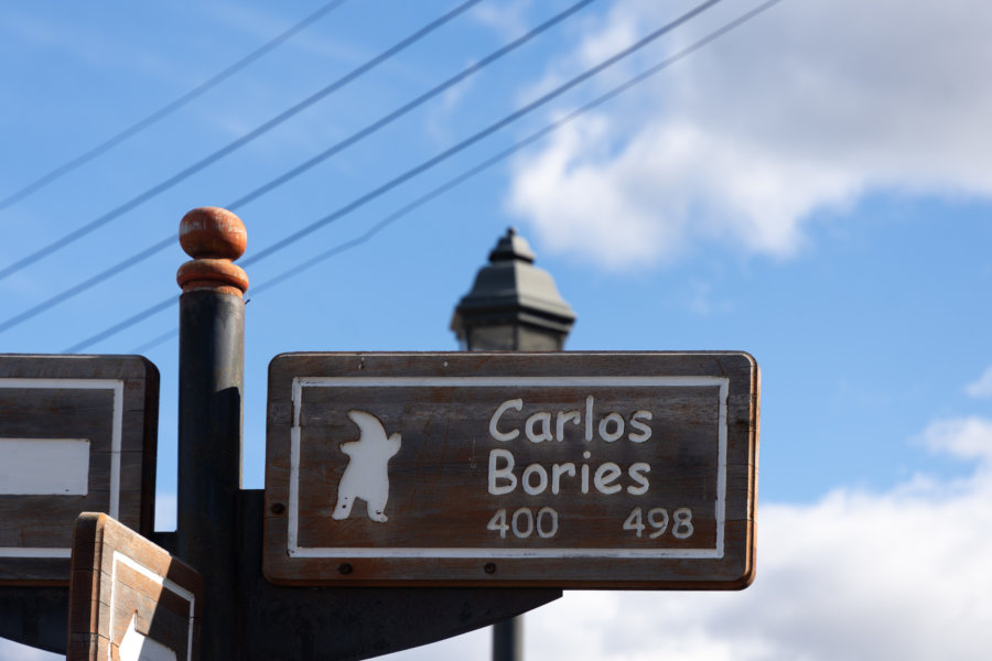 Mylodon sur les panneaux de Puerto Natales