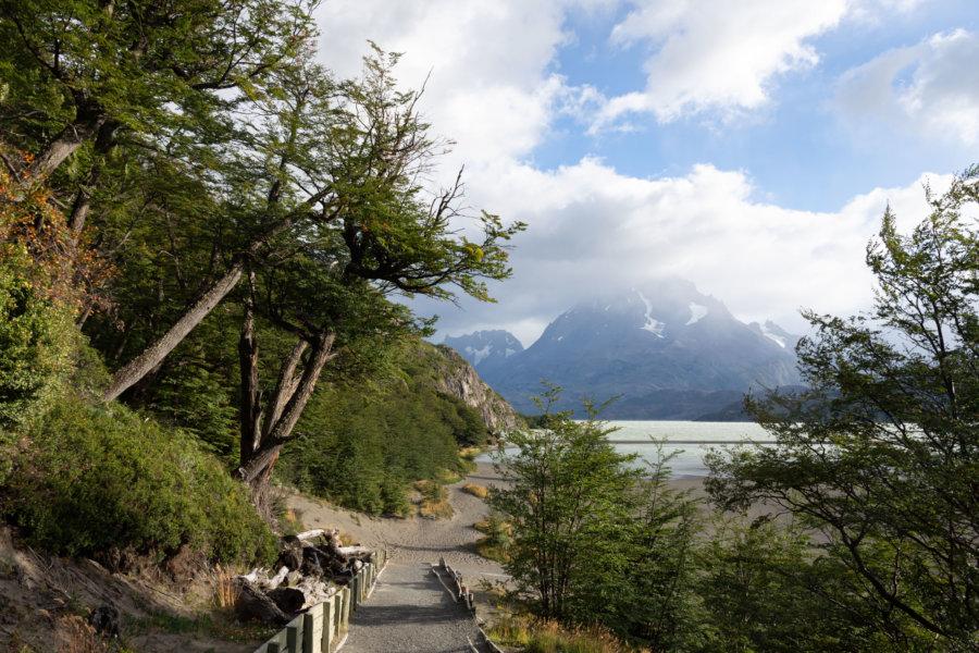 Randonnée du lago Grey à Torres del Paine