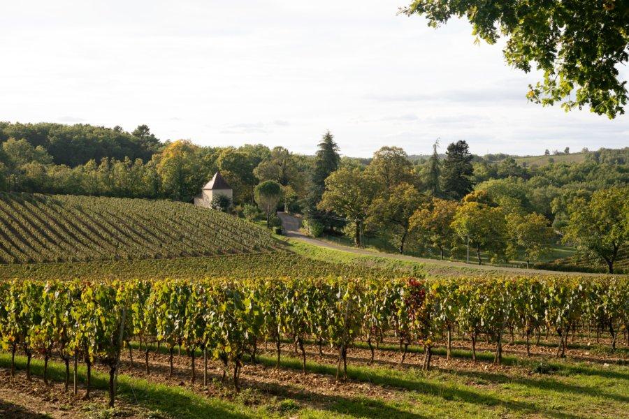 Vignoble de Cahors vers Luzech et Albas