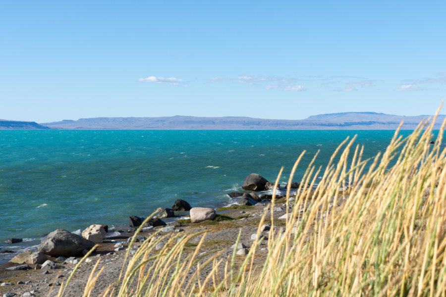 Paysage de patagonie près du Lago Argentino à El Calafate
