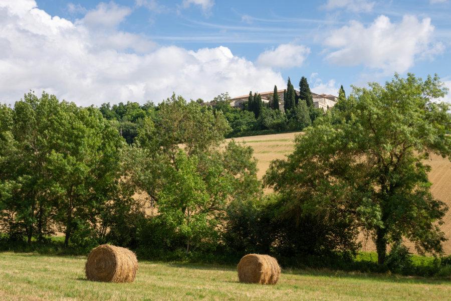 Randonnée à Lectoure, paysage du Gers