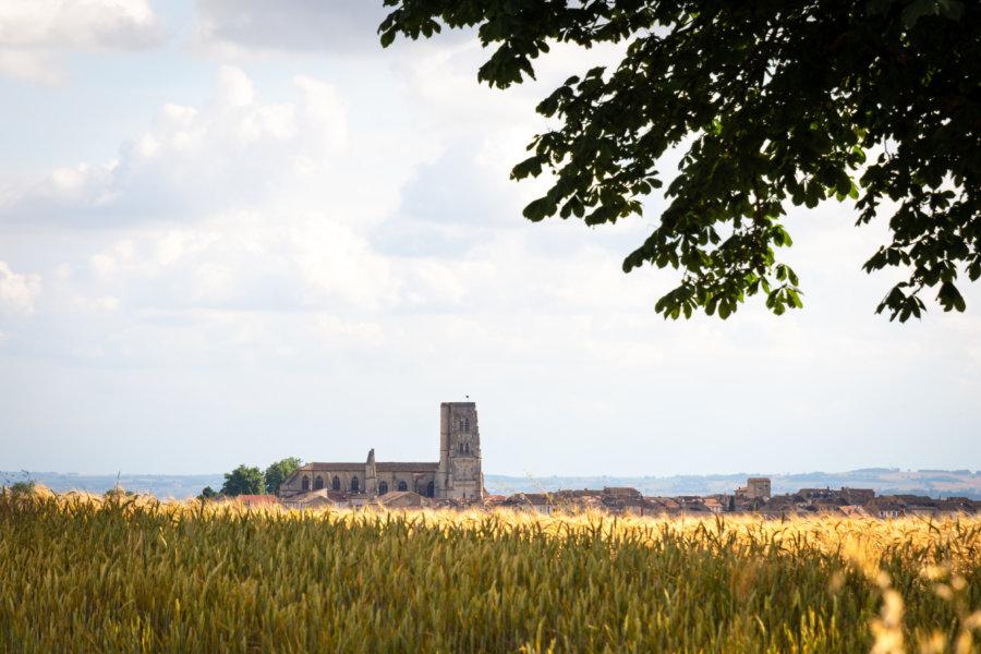 Randonnée dans les champs près de Lectoure