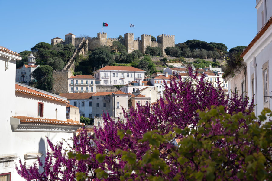 Château São Jorge à Lisbonne