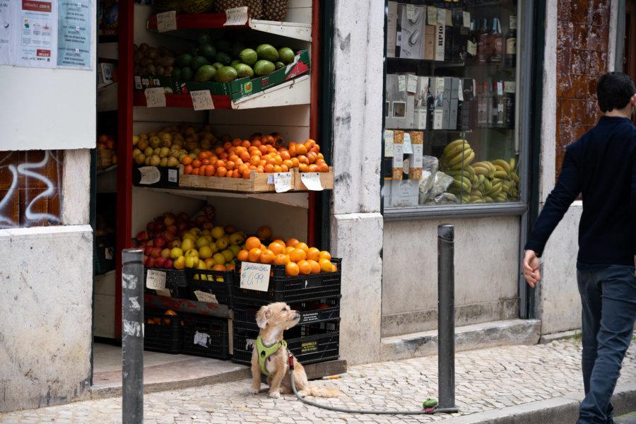 Boutique à Bairro Alto, Lisbonne