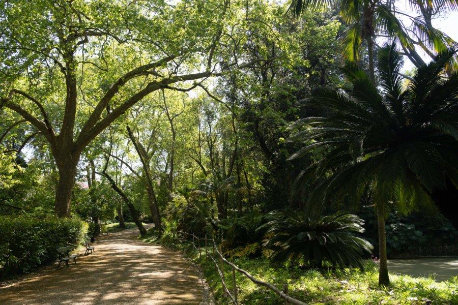 Jardin botanique de Liisbonne