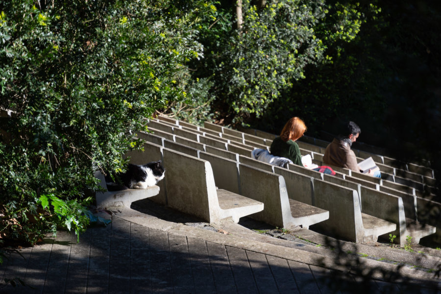 Visiter le parc Galouste Gulbenkian à Lisbonne