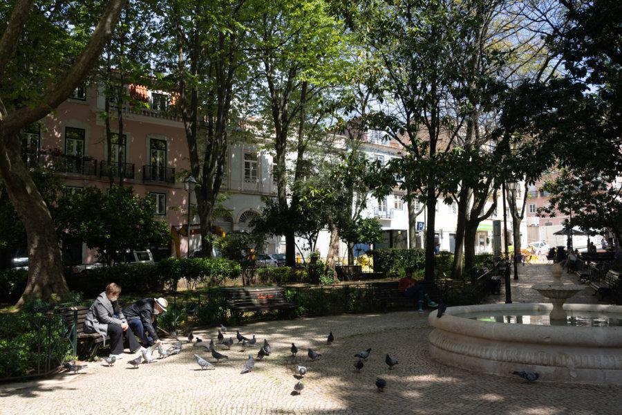 Parc Netter et pigeons, Lisbonne
