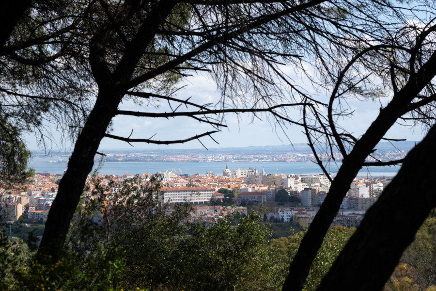 Randonnée dans le parc Monsanto à Lisbonne