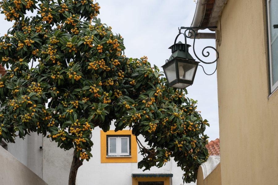 Visite d'Almada au Portugal