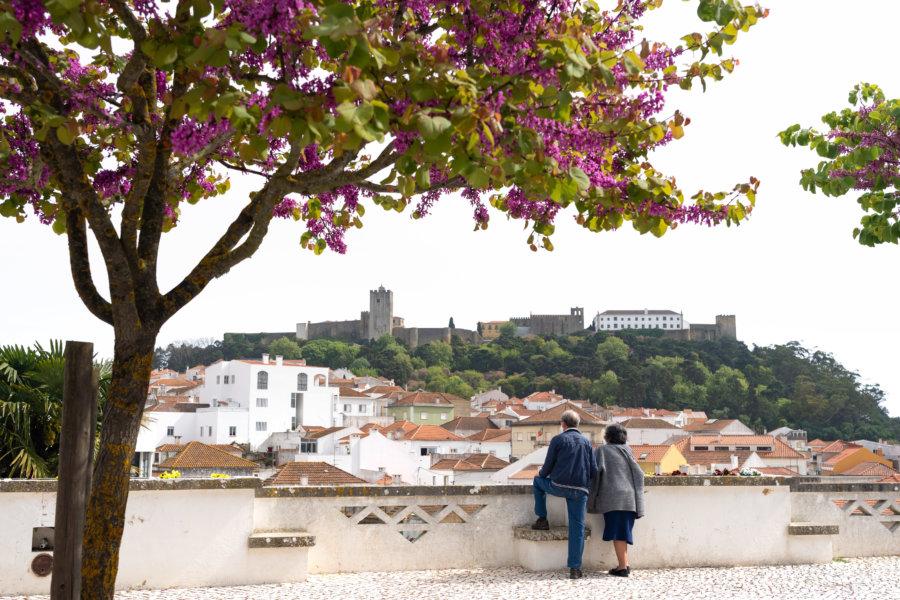 Ville de Palmela et son château, Portugal