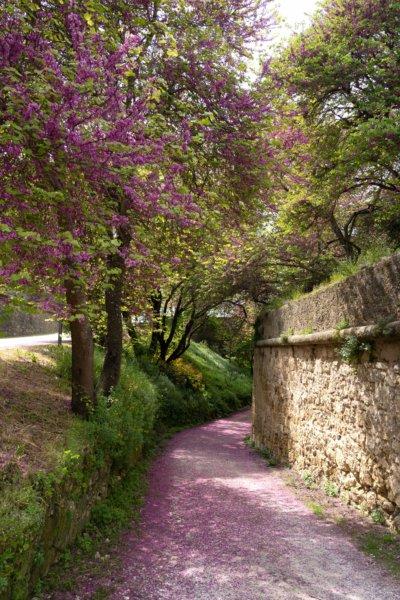 Visite de la ville de Palmela au printemps
