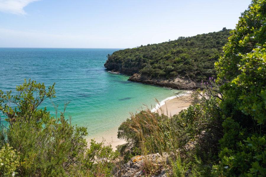 Crique turquoise à Arrabida : la plage dos Coelhos