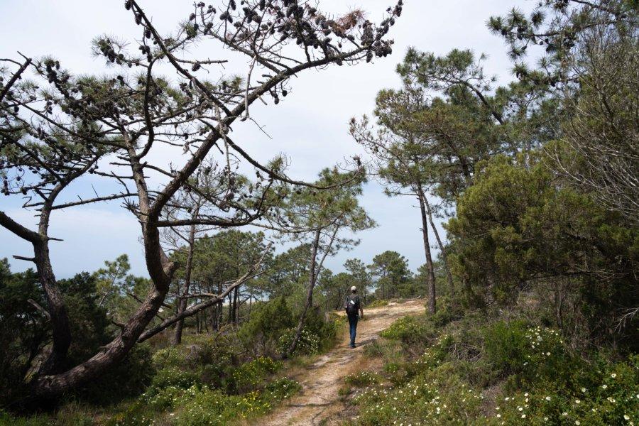 Randonnée sur la colline de la Costa da Caparica