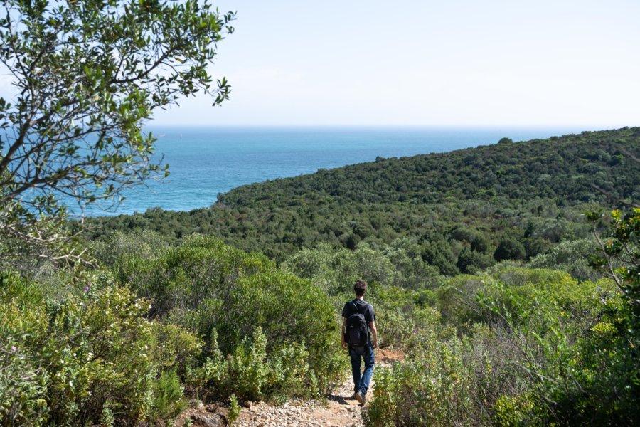 Randonnée à Arrabida jusqu'à la praia dos Coelhos
